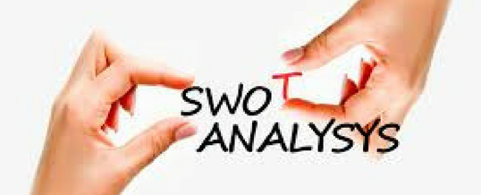 The 'S.W.O.T. Snapshot'—Zooming in on Your Business